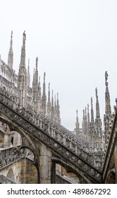 Thousands of gothic pillars in sight
