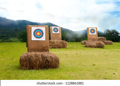 Three archery target on the field, success and win concept