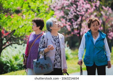 Three Asian senior travelers