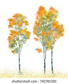 Three autumn trees isolated on white
