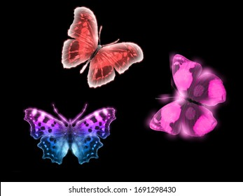 Three beautiful butterflies isolated on a black background. Red, green blue with purple