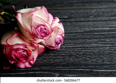 Three beautiful dry pink roses against an old wooden background, with copy space for your text