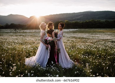 three beautiful girls brunette and blonde, brown-haired woman enjoying Daisy field, nice long dresses, pretty girl relaxing outdoor,having fun, happy young lady and Spring green nature,harmony concept