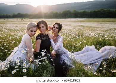 three beautiful girls brunette and blonde, brown-haired woman enjoying Daisy field, nice long dresses,pretty girl relaxing outdoor,having fun, happy young lady and Spring green nature, harmony concept