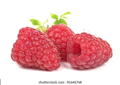 Three berries of a raspberry on a white background