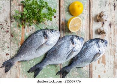 Three big fish (Sparus aurata) freshly caught on a wooden board