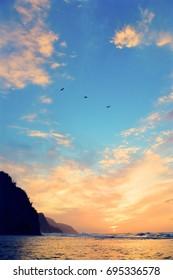 Three Birds in Coastal Sunset