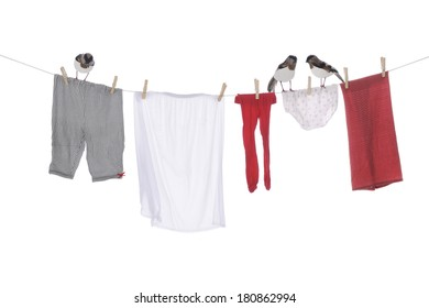 Three birds standing on a clothesline with an assortment of drying clothes.  On a white background.
