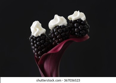 Three black berries on top a red calla lily with dabs of whipped cream on top the berries. A black, horizontal background.