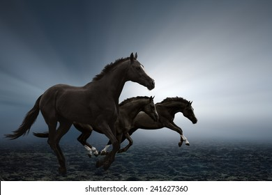 Three black horses running on field, bright light shines through fog