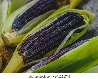 Three blue corn cob (maize) with green leaves on a concrete background, blue corn kernels close up. Horizontal photo, diagonal composition