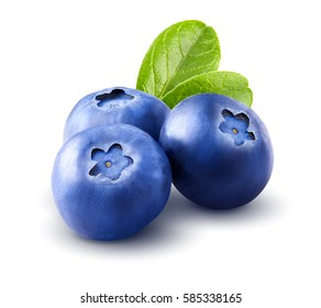 Three blueberries. Berry with leaves isolated on white background. Clipping path. Close up. Macro.