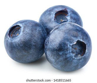 Three blueberry Isolated with clipping path on a white background. Quality photo for your project.