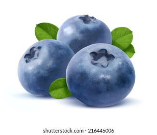 Three blueberry isolated on white background as package design element