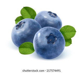 Three blueberry and leaves isolated on white background as package design element
