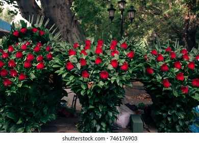 three bouquets of roses for sale on the street