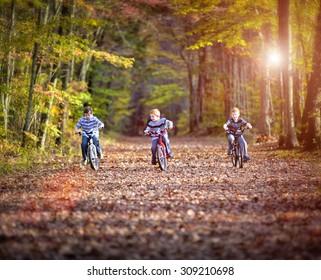 Three boys cycling on a path in fall