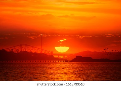 The Three Bridges' silhouette under the orange sunset. There is Cramond Island in the foreground as well as the water of the Firth Of Forth. A group of migratory birds flying across from the right.