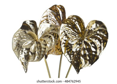 Three calla lilies painted in gold color isolated on white background