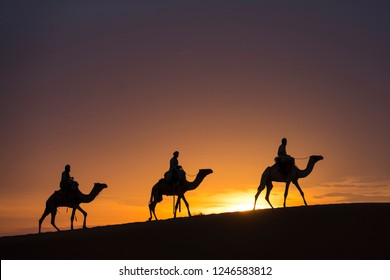 Three camels in front of amazing sunset in the desert