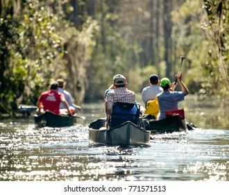 Three Canoes in Okefenokee Swamp