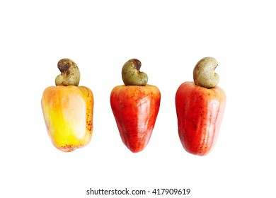 Three cashew fruit apples on a white background isolated