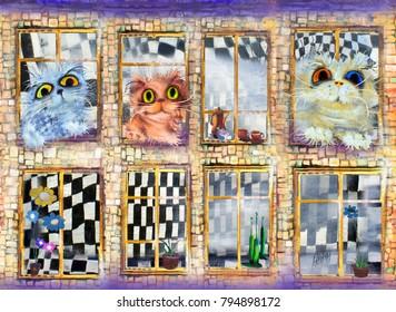 Three cats in open windows