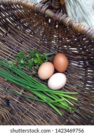 three chicken eggs of different colors in willow basket with chives and savory herbs