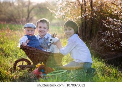 Three children, boy brothers in park, playing with little bunnies on sunset, rural scene