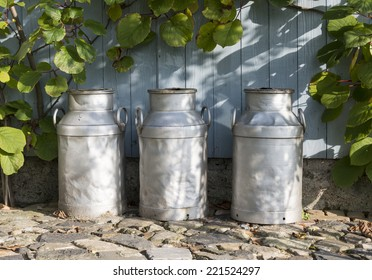 three churns for milk with plants and wood as background