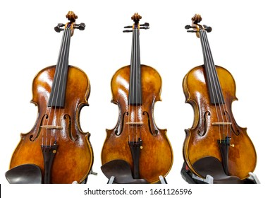 Three classical violins isolated on a white background. Musical instruments of the Symphony orchestra.