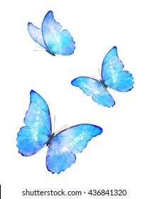 Three color watercolor butterflies, isolated on white background