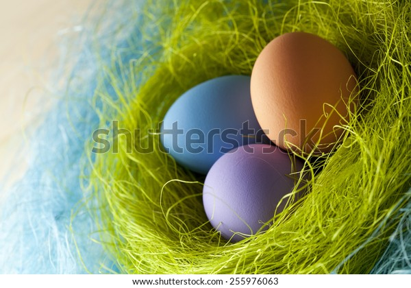 Three colored Easter eggs in the nest