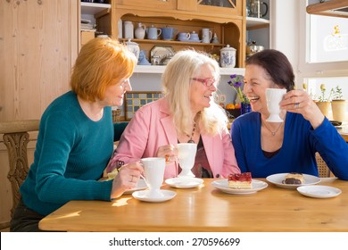Three Cool Middle Age Female Friends Having Snacks at the Cafe While Talking Something Interesting.