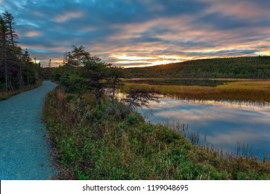 Three Corner Pond walking trail, Torbay, Autumn colors on a walking trail.