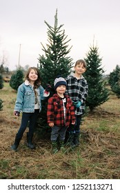 Three cute kids standing in front of the Christmas tree they picked out in a winter or fall lifestyle portrait featuring the young kid in an image from a film scan.