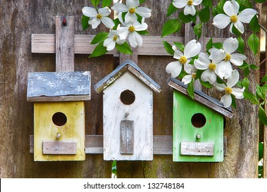 Three cute little birdhouses on rustic wooden fence with Dogwood flowers  on them