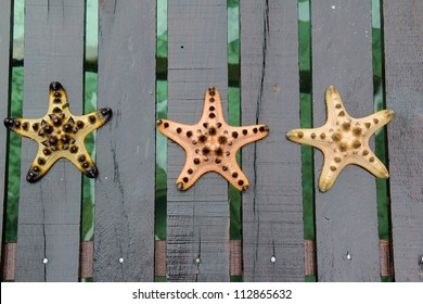 Three different color of starfish