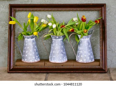 "Three different  ""paintings"" each consisting of three farm milk pitchers with different  colored bunches of tulips. All three framed and leaning against stucco wall."
