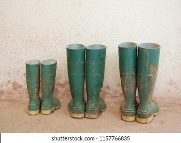Three dirty green wellies outside the farmhouse. Child, Mother, Father, parents' wellies. Boots outside the door by white muddy wall. Wellingtons for a family of farmers.
