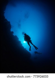 Three divers in silhouette against a tropical reef - Manado, Indonesia.