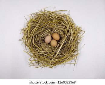 Three eggs in a nest. White background