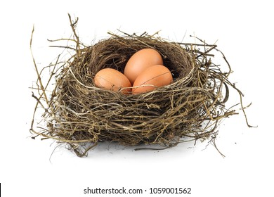 Three eggs in real bird nest isolated on white