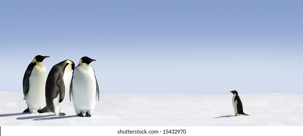 Three emperor penguins are met by an adelie penguin