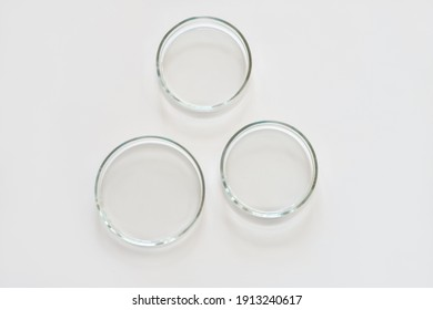 three empty glass Petri dishes on a laboratory table. sterile lab dishes ready for tests. analysis and chemical experiment. cell culture growing equipment. top view.