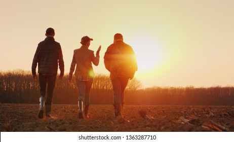 Three farmers go ahead on a plowed field at sunset. Young team of farmers