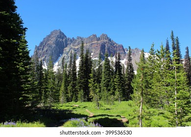 Sitting on buck meadows dildo - 1 5