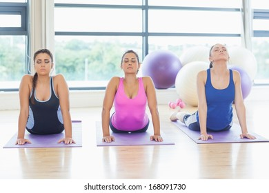 Three fit women doing the cobra pose in a bright fitness studio