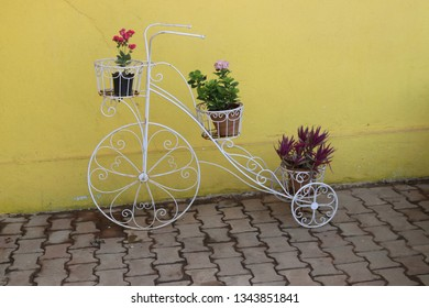 three flower pots on cycle