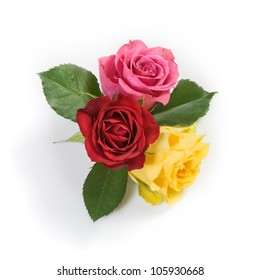 Three fresh colorful roses on white background